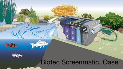 Biotec Screenmatic, Oase