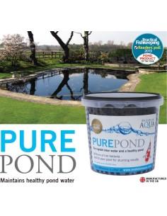 Pure Pond