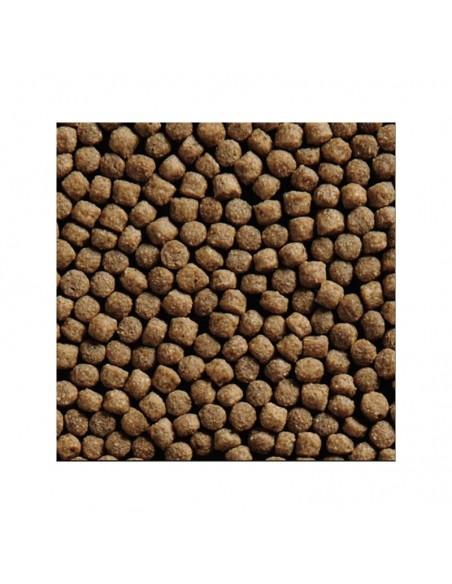 Germen de trigo 5kg - 3mm