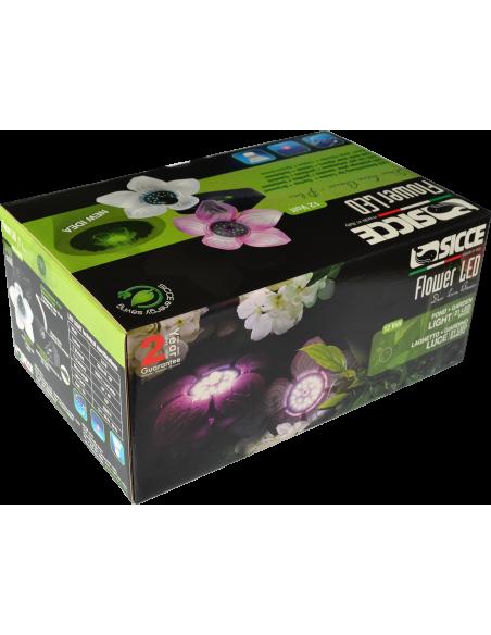 Led Flower caja