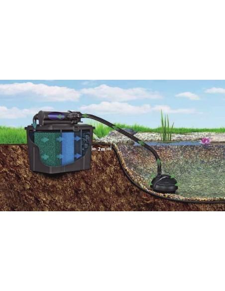 Esquema estanque con filtro