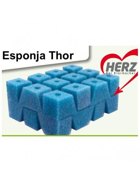 Esponja Thor