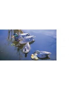 Pato cerceta macho 26x11,5x10,5
